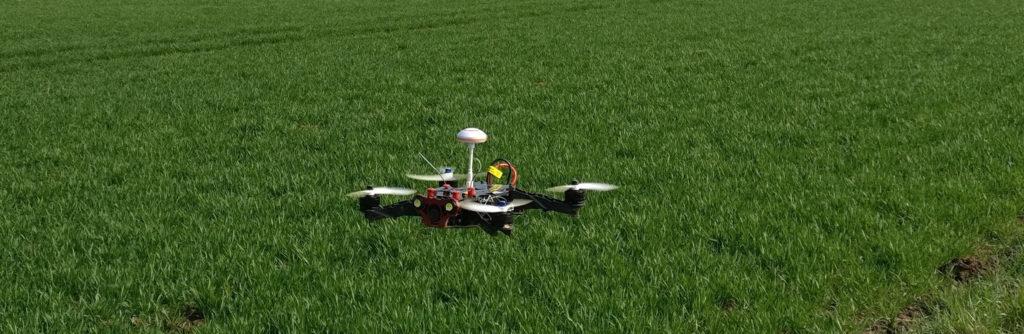 Eachine Racer 250 im Flug über einem Getreidefeld